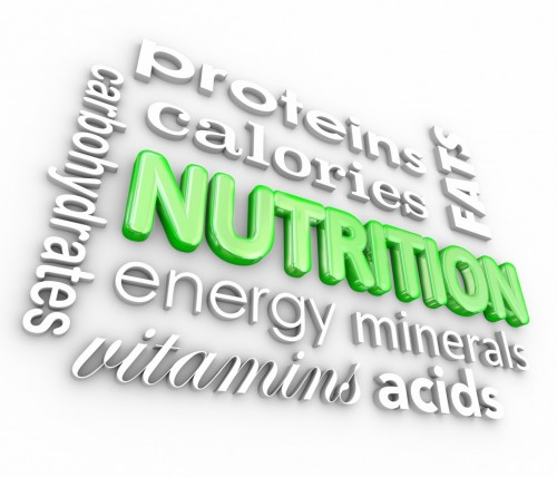 Monumental Fat Loss Series 3 – Diet Composition and Increasing muscle tissue